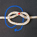 Blood loop dropper knot form loop2.jpg
