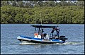 Boats Cabbage Tree Creek Shorncliffe Race Day-07 (25932903722).jpg