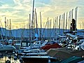 Bol d'Or 2009 - Preparation - panoramio (2).jpg