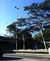 Bom Retiro, São Paulo, Brasil - panoramio (18).jpg