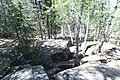 Bonsai Boulders Kananaskis Alberta Canada (26649259480).jpg
