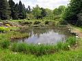 Botanical garden (1).jpg