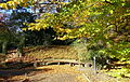 Botanischer Garten Braunschweig - Braunschweig, Germany - DSC04344.JPG