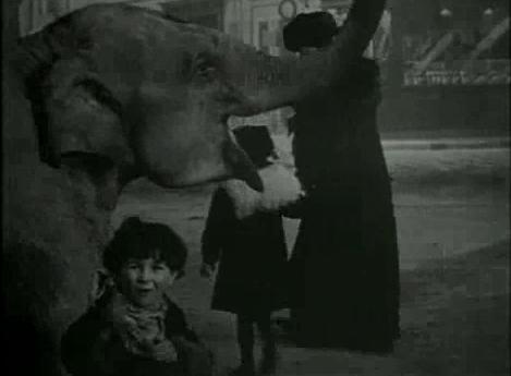 File:Bout de Zan vole un éléphant.tiff