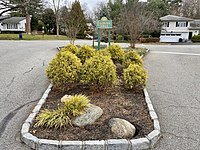 Bridge Road Traffic Island After Renovations From the Women's Club of Flower Hill.jpg