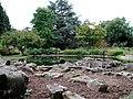 Bristol University Botanic Garden.jpg