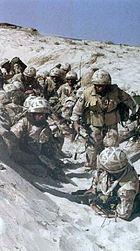 British gulf war