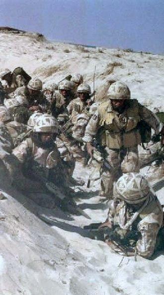 Operation Granby - Image: British gulf war