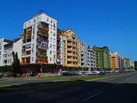 Bulevar Cara Lazara - panoramio.jpg