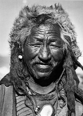 de 5 tibetanen