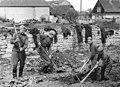Bundesarchiv Bild 183-55264-0001, Nettelstedt, Sowjetsoldaten, Wiederaufbau einer LPG.jpg