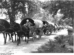 Black Sea Germans - A refugee trek of Black Sea Germans during the Second World War in Hungary, July 1944