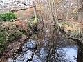 Burnham Beeches, Hartley Court Moat - geograph.org.uk - 1046796.jpg