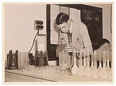 C.S.I.R. Canning Research laboratory investigates rabbit lactose, 1946, by Sam Hood (4441514305).jpg
