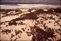 CALIFORNIA-PEBBLE BEACH - NARA - 543193.tif