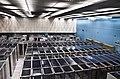 CERN Server 02.jpg