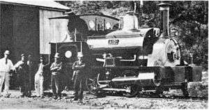CGR 0-4-0ST 1878 Aid - The locomotive Aid at Port Alfred