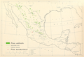 CL-15 Pinus cembroides & Pinus maximartinezii range map.png