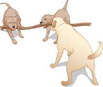 CNX UPhysics 02 04 dogs.png