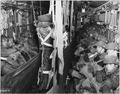 COMBAT CARGO, KOREA - Paratroopers of the 187th Airborne Regimental Combat Team, seated in the cargo compartment of... - NARA - 542315.tif