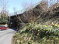 Caergwrle railway bridge.JPG
