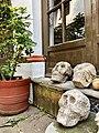 Calaveras de piedra.jpg