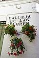 Calleja de las Flores.jpg