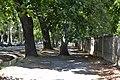 Calles de Aranjuez (29081922250).jpg
