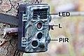 Camera trap, fotopułapka, kamera leśna, kamera obserwacyjna.jpg