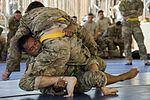 Camp Lemonnier Combatives Tournament 170113-F-QF982-1067.jpg