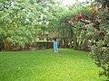 Canteen Garden at Anandvan - panoramio.jpg