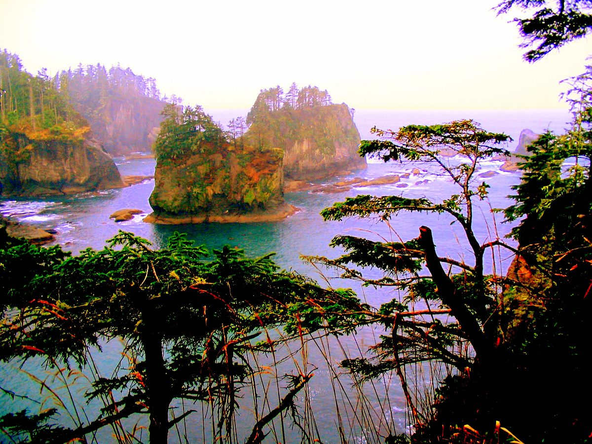 Neah Bay – Travel guide at Wikivoyage