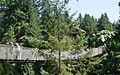 Capilano Suspension Bridge (7960612266).jpg