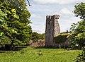 Carneycastle, Tipperary (geograph 4569207).jpg