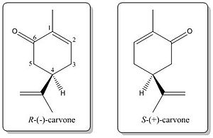 Chirality - Image: Carvone enantiomers 1