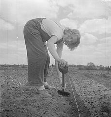 Cecil Beaton Photographs- Women's Horticultural College, Waterperry House, Oxfordshire, 1943 DB259.jpg