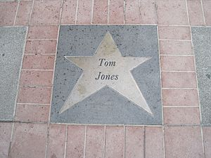 Tom Jones (singer) - The star commemorating Jones at the Orpheum Theatre, Memphis