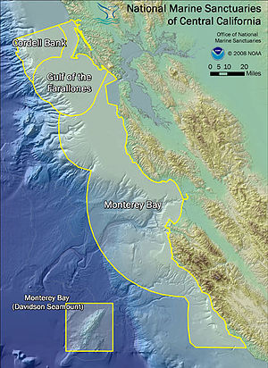 Marine protected area - Diagram illustrating the orientation of the 3 marine sanctuaries of Central California: Cordell Bank, Gulf of the Farallones, and Monterey Bay. Davidson Seamount, part of the Monterey Bay sanctuary, is indicated at bottom-right.