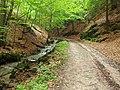 Cestou na Strážov - panoramio (1).jpg