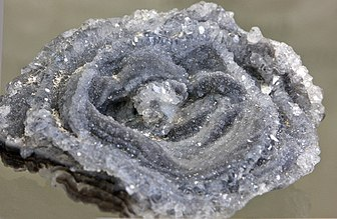 Chalcedon-Rose mineralogisches museum bonn.jpg