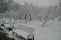 Chaoyang, Beijing, China - panoramio (42).jpg