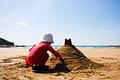 Chateau de sable.png