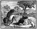Chauveau - Fables de La Fontaine - 01-10.png