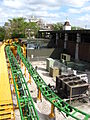 Cheetah Hunt transfer track.jpg