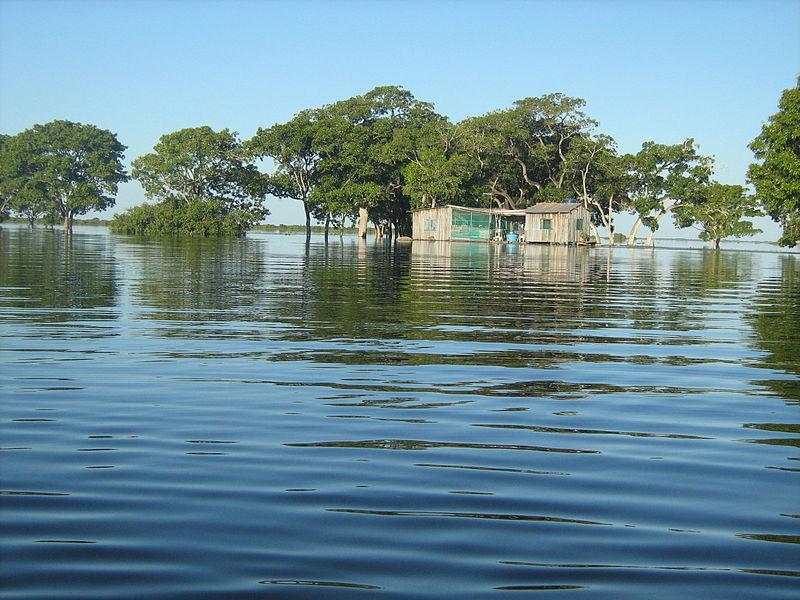 Como é o Pantanal com chuva