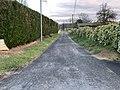 Chemin Pins St Jean Veyle 1.jpg