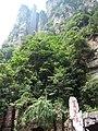 China IMG 3649 (29116514923).jpg