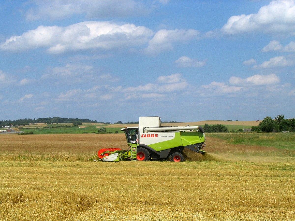 Сельское хозяйство Белоруссии Википедия