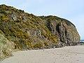 Cliffs at North end of Lunan Bay - geograph.org.uk - 13817.jpg