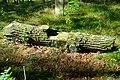 Cmentarz żydowski w Dobrodzieniu18.JPG